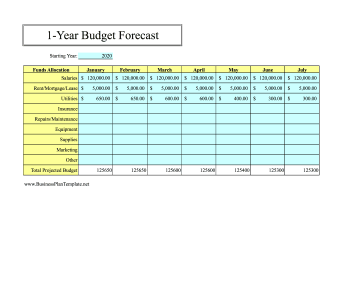 12-Month Budget Forecast template