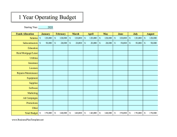 12-Month Operating Budget template