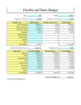 Flexible And Static Budget template