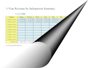12-Month Revenue Summary By Salesperson template