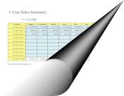 12-Month Sales Summary template